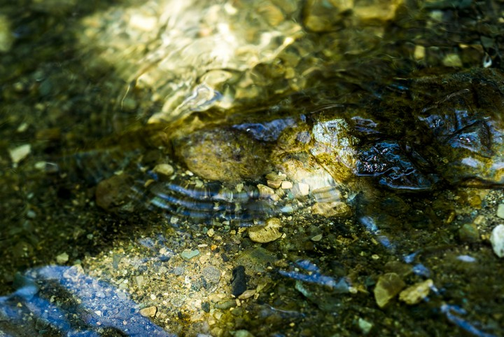 Photography of river and stones